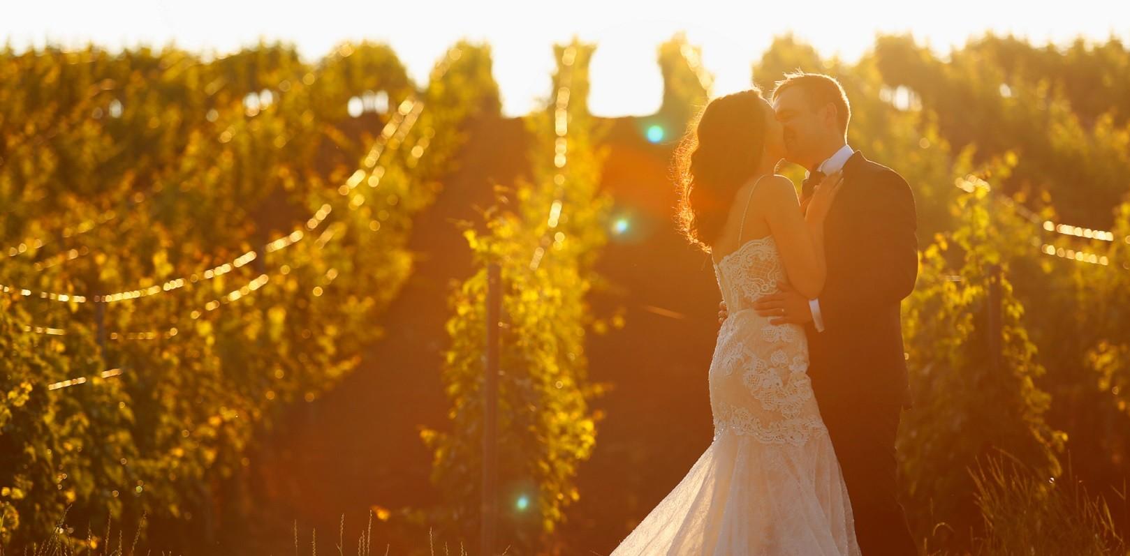 Schönes Hochzeitspaar beim Sonnenaufgang im Weingarten