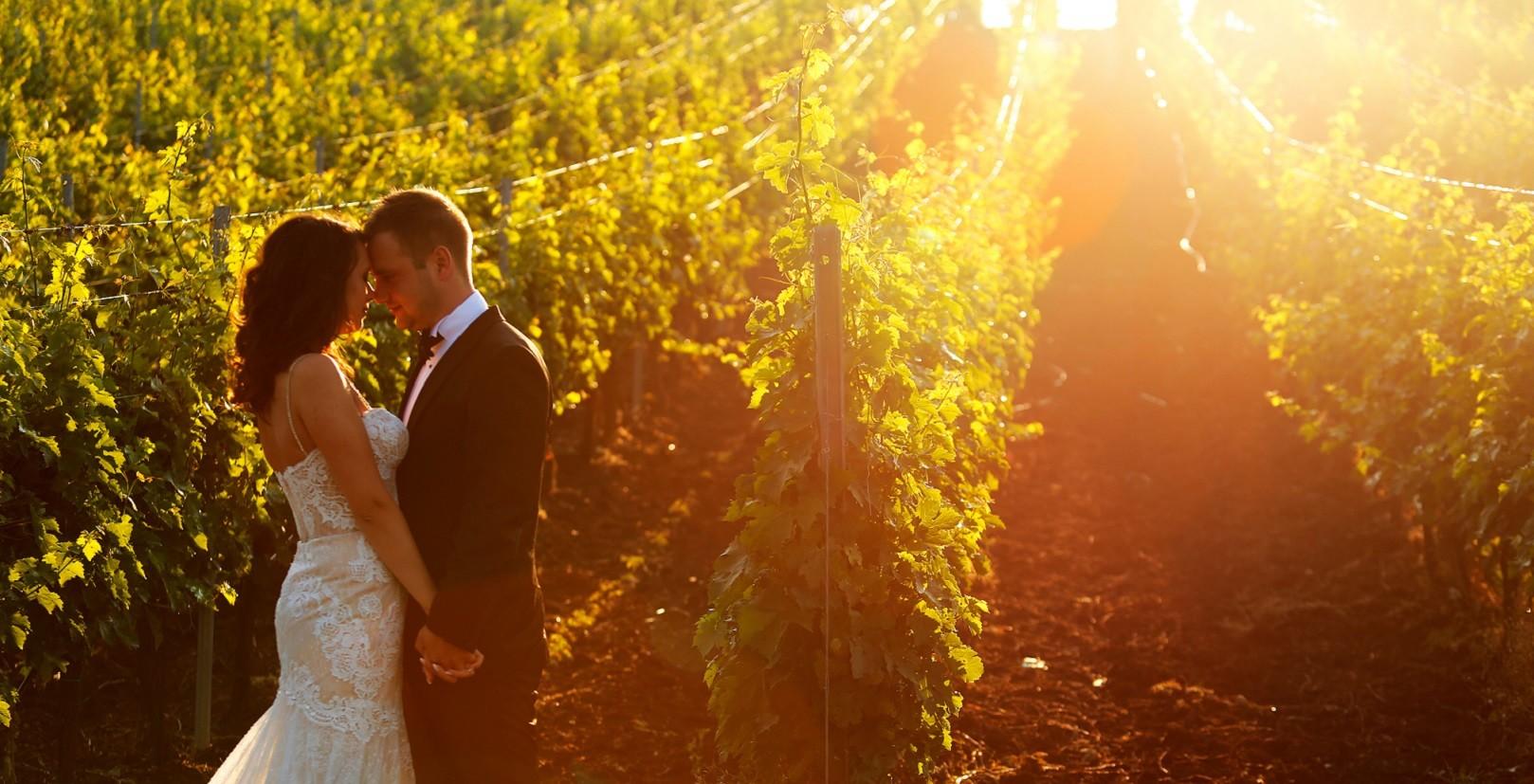 bride and groom walking in vineyard at sunrise